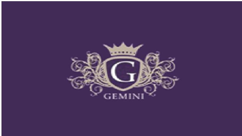 Gemini_Hairdressers_&_Beauty_Salon